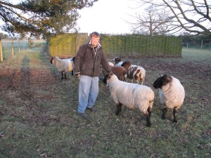 James and sheep
