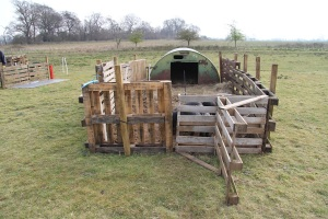 pig ark and small run made out of pallets