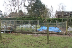 As you can see our veg plots aren't perfect, but they provide sufficient food