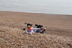 Rolling down the shingle