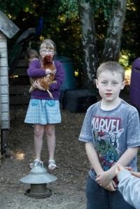 Matthew and hens