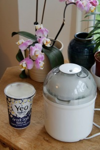 No more buying yoghurt thanks to this little yoghurt maker