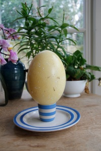 Rhea egg in a normal size egg cup!