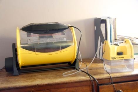incubator setup