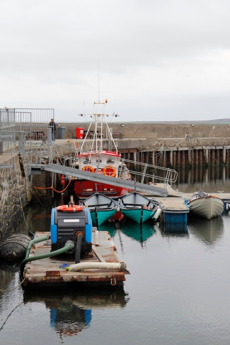 Bowmore harbour2