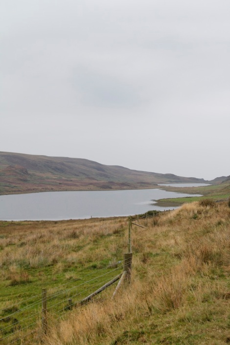 Close up of the lochs