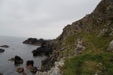 Coastline and goat path