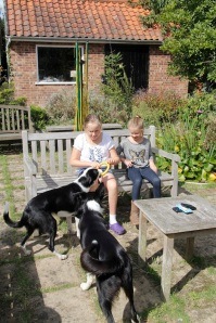 kids and dogs2