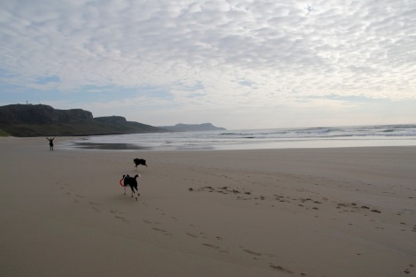 Machir Bay3