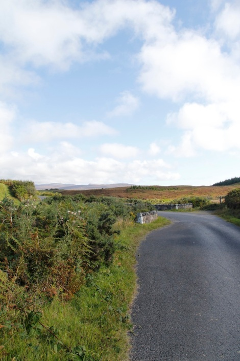 The road on the Mull of Oa was single lane and often had grass in the middle