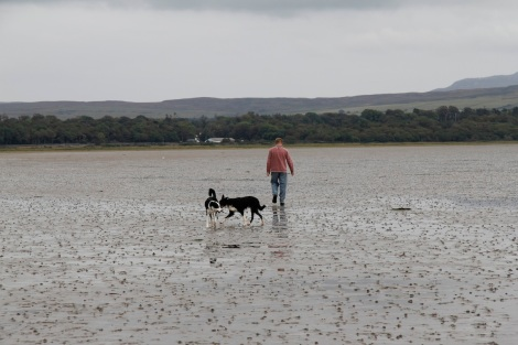 Walking across mud and sand flats at Rubha Ban