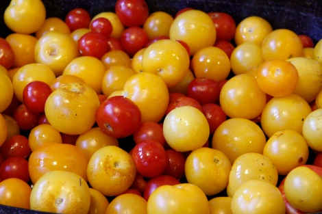 about to be roasted tomatoes