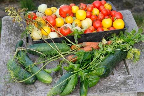 veg haul