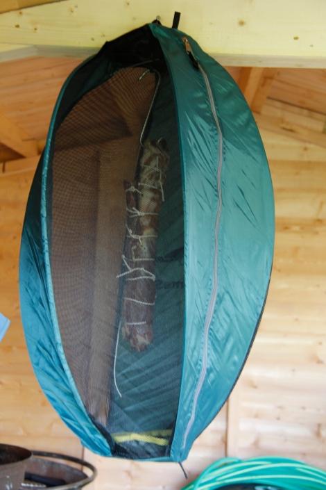 pancetta hanging