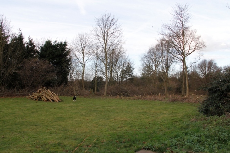 You can see all the twiggy branches that james had to burn all round the edges - there were piles of them