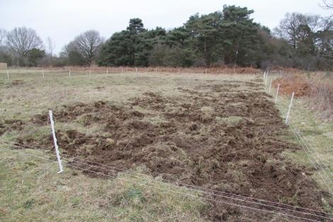 churned up field