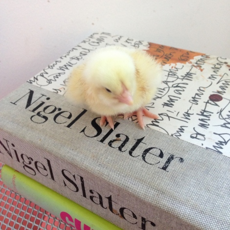 chick reading nigel slater