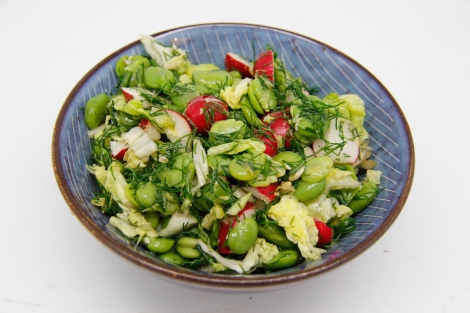 broadbean and radish salad