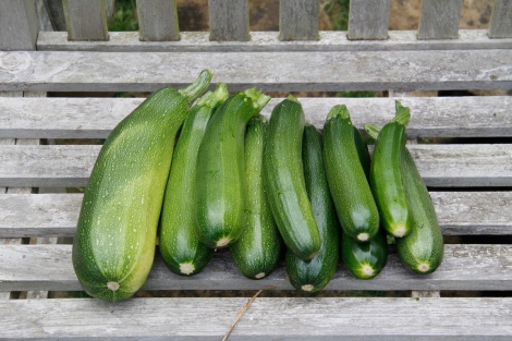 bunches of courgettes