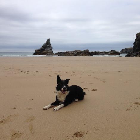 K o the beach - wet