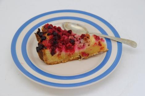 slice of tart2