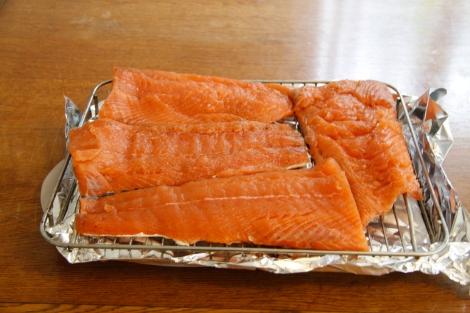 salmon with pedicle
