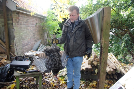 james and dead turkey