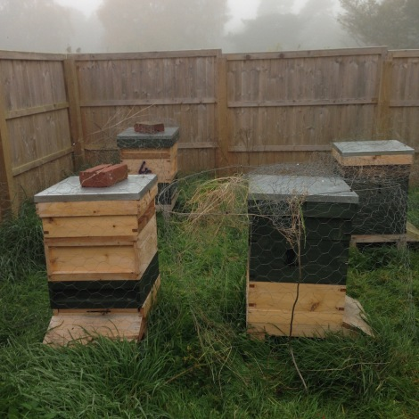 wrapping the hives in chicken wire