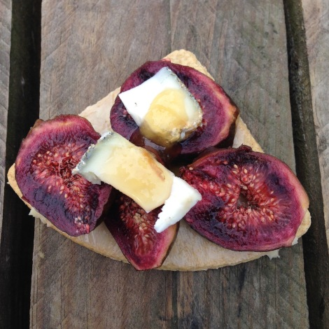 fig and cheese.jpg