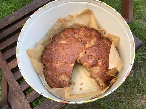 cake-in-tin