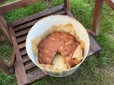 cake-in-tin2