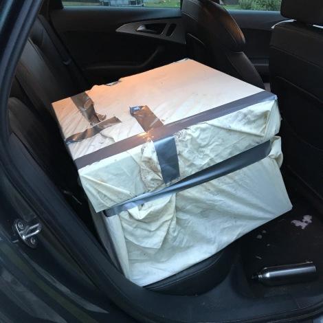 hive in car.jpg