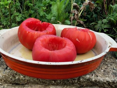 tomato cases.jpg