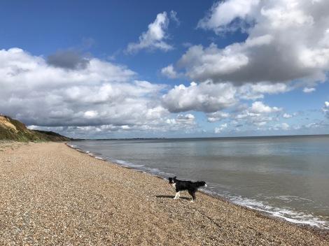 Dunwich beach2.jpg