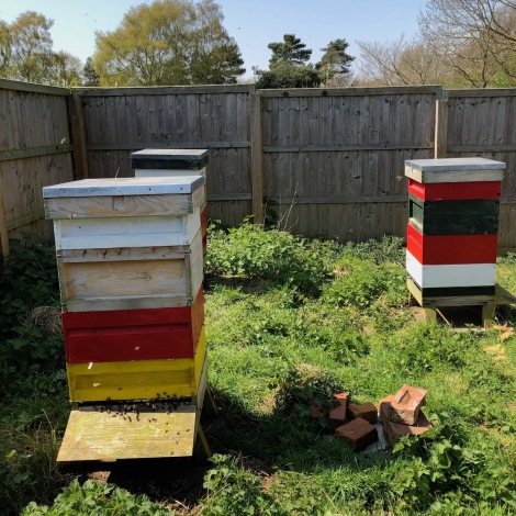 hives