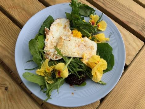 eggs and salad.jpg